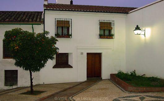 'Orange Tree in Cordoba' 'Un oranger à Cordoue, Espagne'  www.vise.pictures  #orange #spain #tree #city #urban #night #andalucia #picture #house #original #arbre #soiree #andalousie #espagne #photo