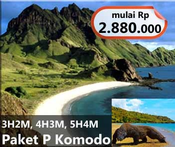 Komodo Island Tour. Visit one of the most exotic places in Indonesia. Group prices starting from Rp 2.880.000/person. Available 3D2N, 4D3N, and 5D4N. Contact +62 21 231 6306 for more information