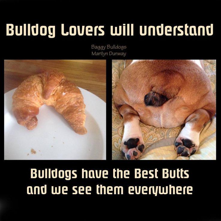 (4) Baggy Bulldogs - Baggy Bulldogs with Auddey Braun and Karen A...