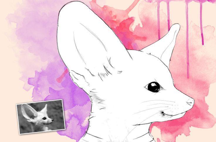Retrato personalizado hecho a mano con Wacom. Para mascotas.