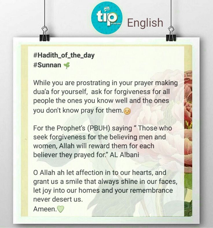 Ask Allah forgiveness for you and for others :) #allah #tip_of_the_day #life #daily #sunan #teachings #islamic #posts #islam #holy #quran #good #manners #prophet #muhammad #muslims #smile #hope #jannah #paradise #quote #inspiration #ramadan #رمضان #الله #الرسول #اسلام #قرآن #حديث #سنن #أمل #جنة