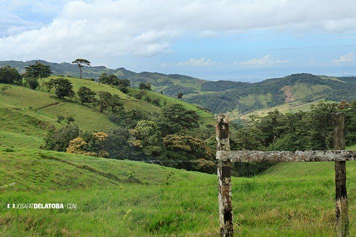 Monte Verde Costa Rica #josafatdelatoba #cabophotographer #travels #costarica #monteverde #landscapephotography
