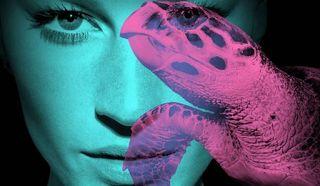 Planet Stars: H Gisele μια θαλάσσια χελώνα για τα Ηνωμένα Έθνη