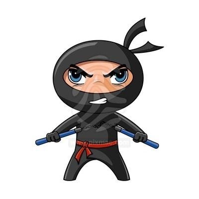 Image result for ninja