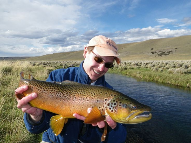 1000 images about patagonia on pinterest trout fishing for Fly fishing patagonia