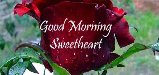 Good Morning Sprüche Sms : Good morning sms messages g kenny pinterest