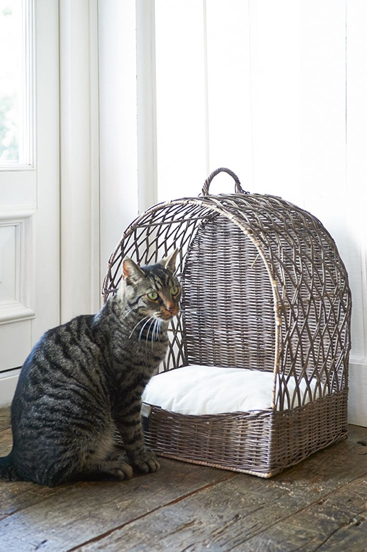 17 Best Images About Basketry Pet Baskets On Pinterest