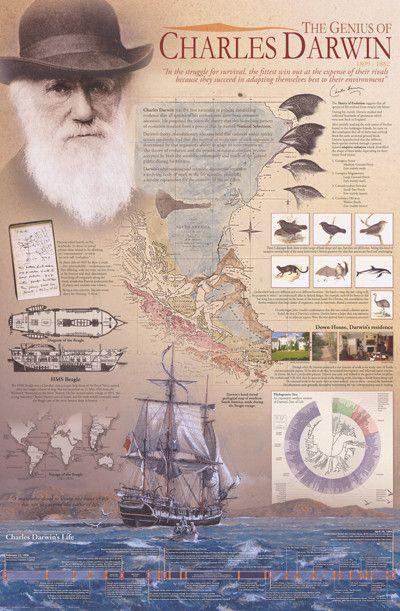 Genius of Charles Darwin Evolution Theory Education Poster 24x36