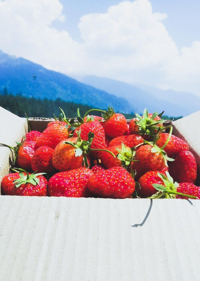 Itap Of Strawberries Manali India Itookapicture Unique Photography Photography Techniques Strawberry