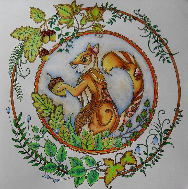 Enchanted Forest Owl And Squirrel