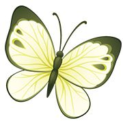 butterfly tattoos yellow | Yellow green butterfly tattoo
