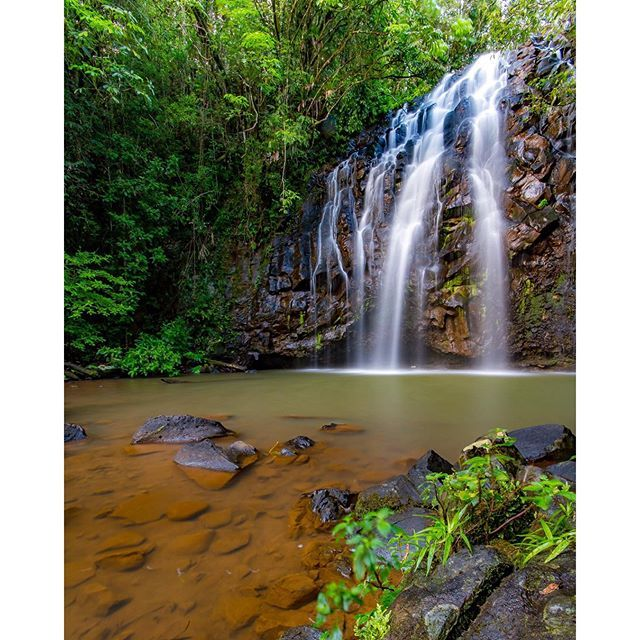 With waterfalls as beautiful as Ellinjaa, you'll definitely want to go chasing #thisisqueensland by @brisbenphotography