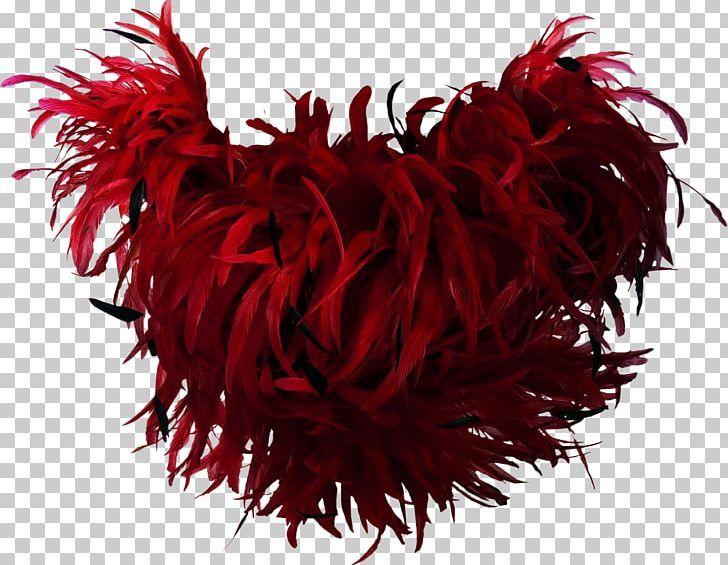 Feather Boa Bird Red Png Animals Beautiful Beautiful Feathers Bird Clothing Feather Boa Feather Bird