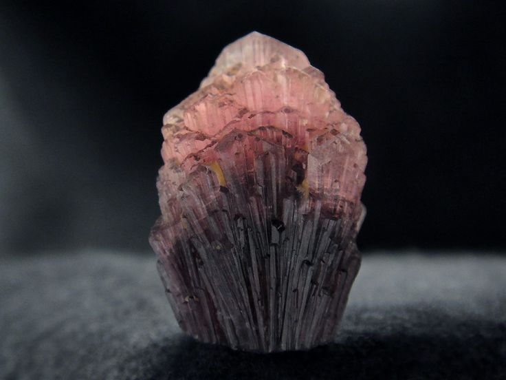 Perfect quality, mushroom tourmaline specimen, from Palelni mine, Khetchel village, Molo quarter, Momeik Township, Kyaukme District, Shan State, Myanmar  Size 22 х 17 х 13 mm   Copyright © Oleg Lopatkin