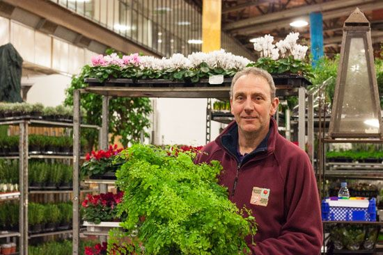 Craig at Quality Plants with Maidenhair ferns at New Covent Garden Flower Market - February 2015