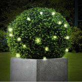 Artificial Topiary Ball / 20 LED Battery Lights