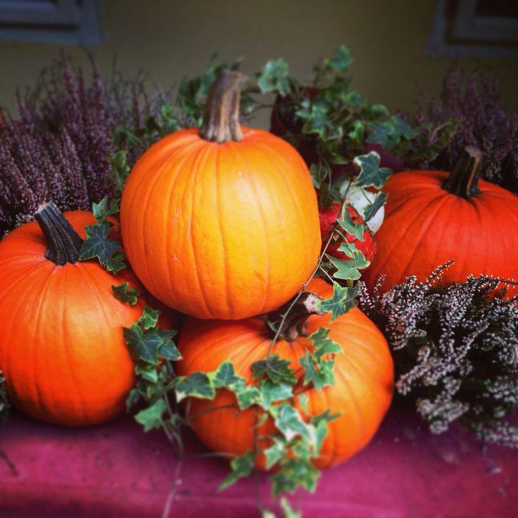 Autumn! :-)