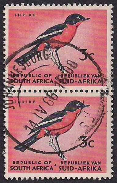 South Africa Postage Stamp, 1966 - Crimson-breasted Shrike