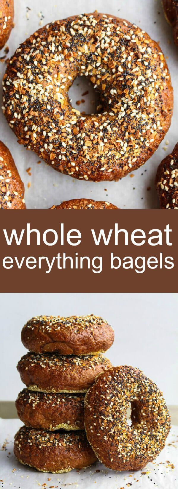 Whole Wheat Everything Bagels homemade/ bagels/ breakfast/ Savory and delicious these Whole Wheat Everything Bagels are a fun, flavorful and simple breakfast recipe that everyone will enjoy! everything bread / how to make bagels / whole wheat bagels