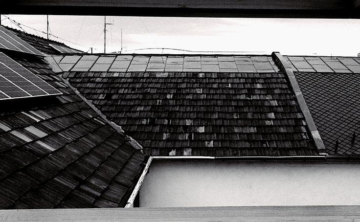 Window by Beata Bauer