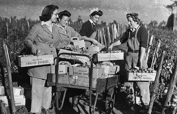 Members of the Women's Land Army training at East Melling, near Maidstone, in Kent. September 22, 1943