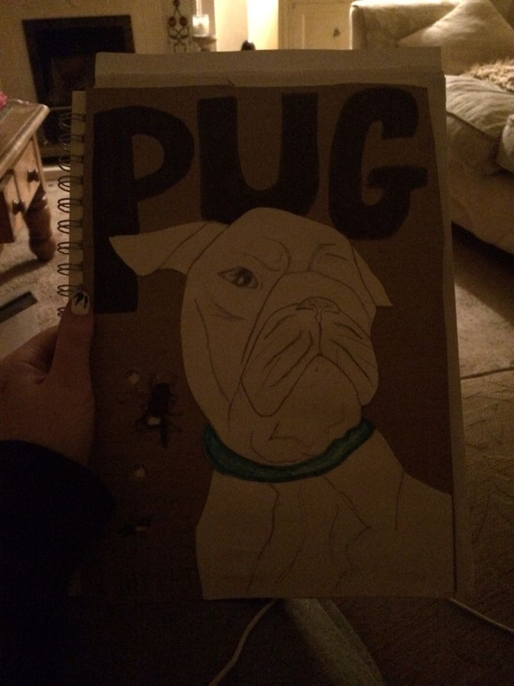Pug ;) Day 2 ( not finished) made with paper and a cardboard background to give a different effect