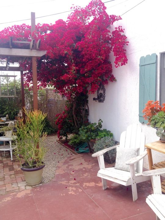 Name: Leslie Location: Los Angeles, California 'Tis the patio season y'all! We're back on the garden beat with return of My Great Outdoors, and what better way to get things rolling than with Leslie's boldly colored, vintage brick backyard.