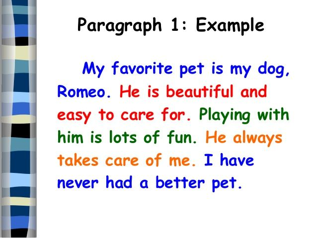 expository essay about dogs