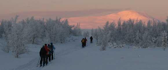 NOORWEGEN - Rondane, paradijs voor langlaufers (Int. groep) - Wintervakantie in het hart van Noorwegen, tegen de uitlopers van het Rondane-gebergte. Gevarieerde langlauf tochten door ongerepte natuur in zuivere lucht.