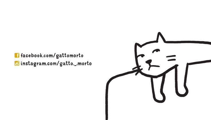 Un gatto pigro e dalle pose buffe prima diventa un fenomeno virale sui social network e ora anche un libro, per la gioia dei gattofili