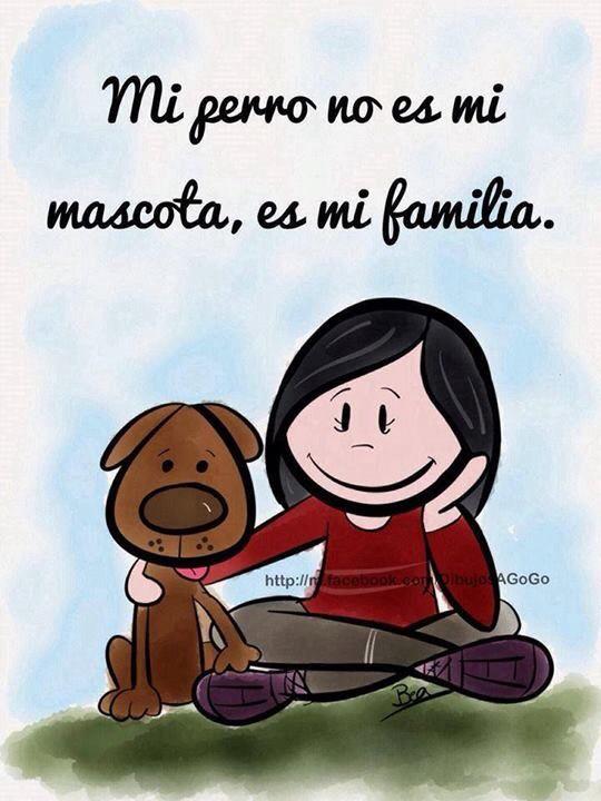 Mi perro, mi familia :)