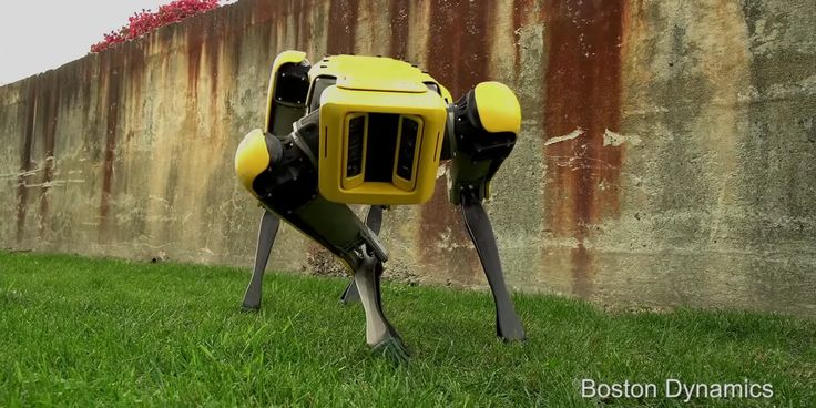 Watch Boston Dynamics' 25-second viral video unveiling a new lifelike robotic dog