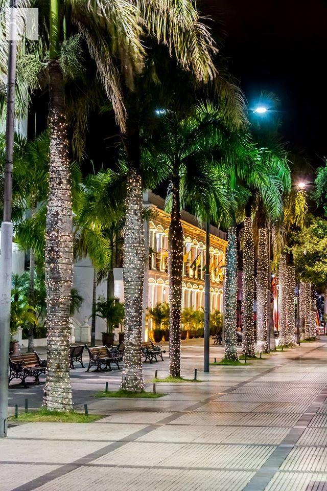 BOLIVIA -- Santa Cruz's city's Main Square