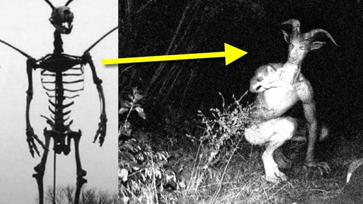 13 Most Mysterious Urban Legends
