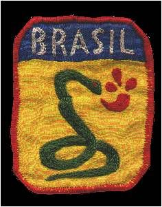 "The badge of the Brazilian Expeditionary Force (FEB) depicts a snake smoking a pipe. FEB's lemma was ""The snake is smoking"". It was a joke with a statement made by the then Brazilian President, Getúlio Vargas, who said that ""it was easier for a snake to smoke than Brazil ever enter the war"". He was charged of being Hitler's admirer, but was forced by circumstances to declare war to Germany."