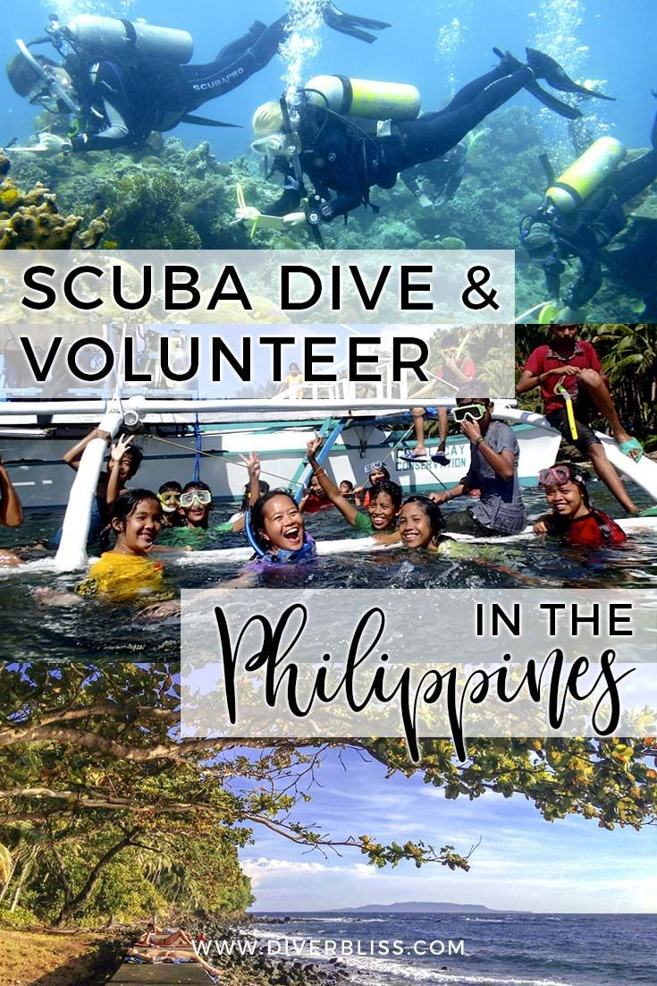Scuba Dive Volunteer And Do Marine Conservation In The Philippines In 2020 Scuba Diving Marine Conservation Learn To Scuba Dive
