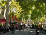 Cours Mirabeau in Aix en Provence, Provence