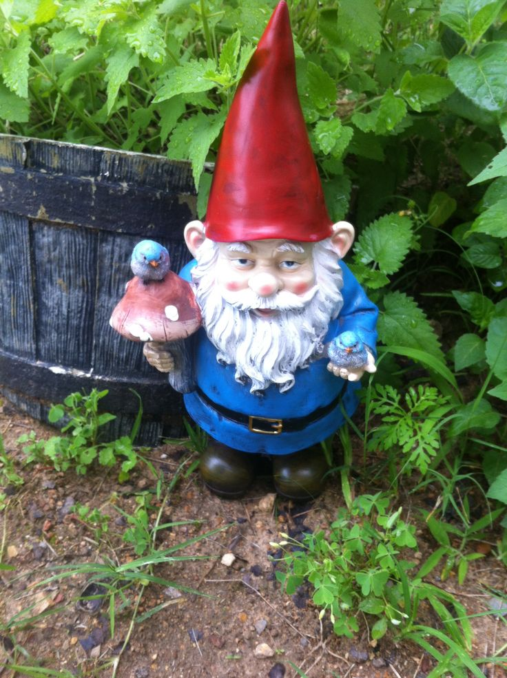 Gnome In Garden: 1000+ Images About GARDEN GNOMES AND STATUES On Pinterest