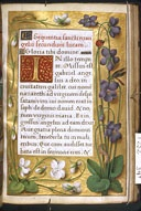 Cambridge, Harvard University, Houghton Library   MS Typ 0252