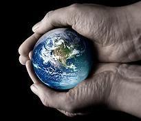 Definición de medio ambiente — Definicion.de