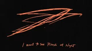 'Pulaski at Night' - Andrew Bird - YouTube