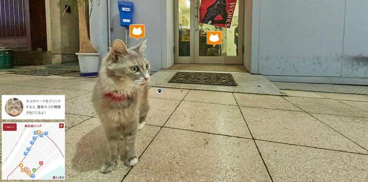 広島県尾道市・猫の視界のストリートビューマップ、Google Street Viewのスタッフが制作