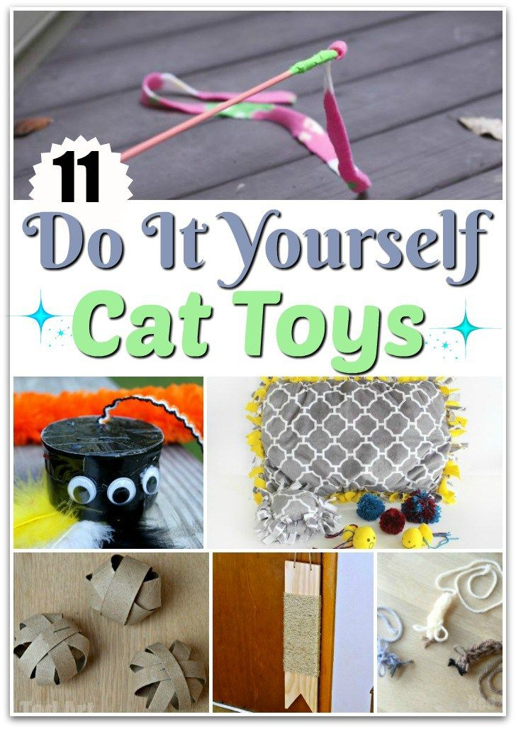 show your kitty friends some homemade love with some of these fun and frugal DIY cat toys that you can make them to show how much you love and care!