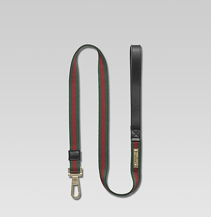 A Gucci Dog Collar For Your Fashion pooch