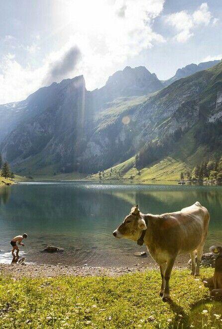 Seealpsee in Appenzellerland.