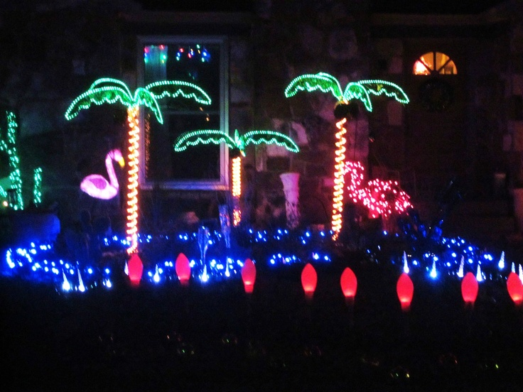 Best tropical christmas images on pinterest