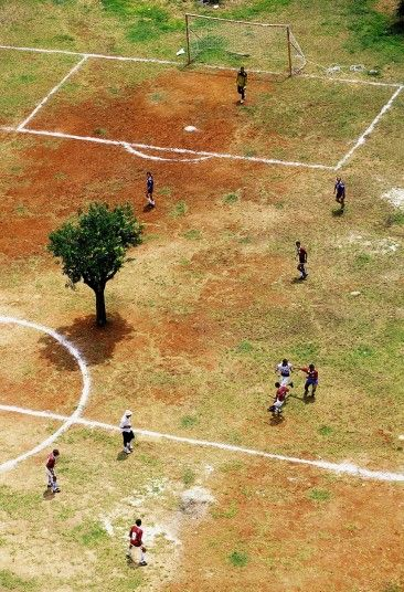 A tree in the middle of a football field (Residents play on a faded football field in Sao Paulo, Brazil)