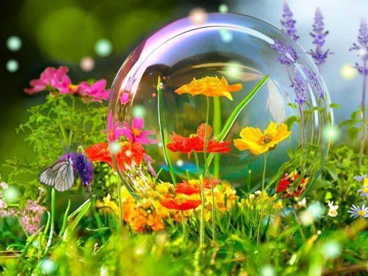 "simply-beautiful-world: "" ❥‿↗⁀simply-beautiful-world ""                                                                                                                                                                                 Plus"