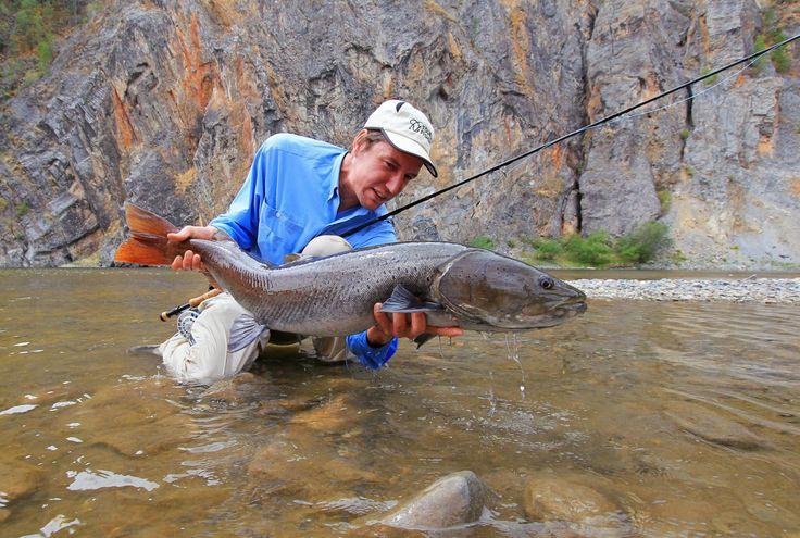 Mongolia, Taimen Fishing.
