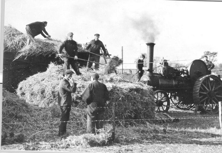 27 Threshing scene with tractor.jpg (1720×1184)